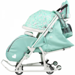 Санки-коляска Disney baby 2 DB2 цвет: мятный/Минни Маус